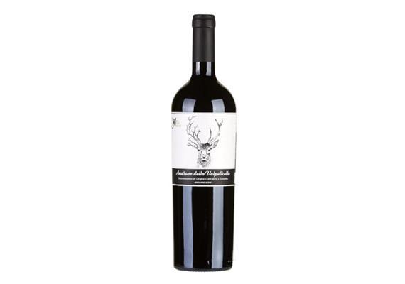 Amarone della Valpolicella DOCG organic Wild Nature, 750 ml, Fidora