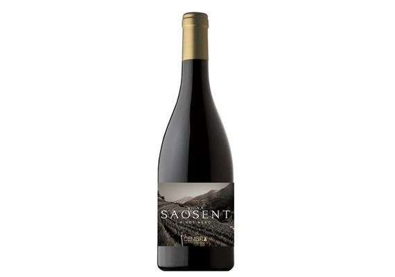 Vigna Saosent Pinot Nero, Trentino DOC, 750 ml, Cembra